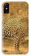 Male Leopard IPhone Case