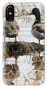 Mallard Ducks Standing On A Rock IPhone Case