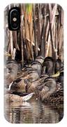 Mallards - Under Mothers Wing IPhone Case