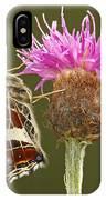 Map Butterfly Araschnia Levana IPhone Case