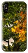 Maple In Oak Grove IPhone Case
