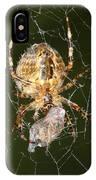 Marbled Orb Weaver Spider Eating IPhone Case