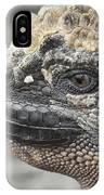 Marine Iguana Amblyrhynchus Cristatus IPhone Case