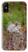 Marsh Spider Web IPhone Case