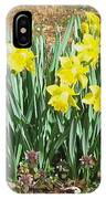 Mary's Daffodils IPhone Case