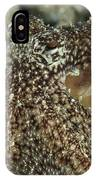 Mimic Octopus Head, North Sulawesi IPhone Case