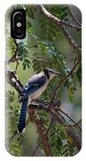 Mississippi Blue Jay IPhone Case