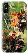 Monarch Butterfly Gathering IPhone Case