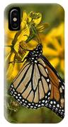 Monarch Butterfly On Tickseed Sunflower Din146 IPhone Case