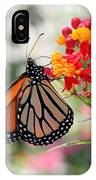 Monarch On Butterfly Weed IPhone Case