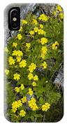 Monkey-flower (mimulus Primuloides) IPhone Case