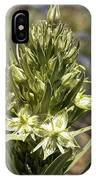 Monument Plant (swertia Radiata) IPhone Case