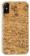More Sheep To Count To Go To Sleep IPhone Case