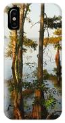 Morning In The Swamps IPhone Case