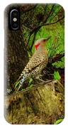 Morning Northern Flicker IPhone Case