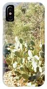 Moroccan People And Cacti IPhone Case
