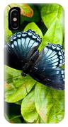 Mosaic Flutterby IPhone Case
