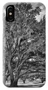Moss-draped Live Oaks IPhone Case
