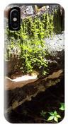 Mossy Waterfall On Mushroom Rock IPhone Case