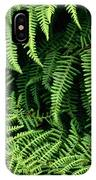 Mountain Bindweed And Fern Fronds IPhone Case