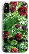 Mountain Blooms IPhone Case