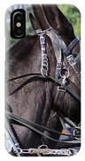 Mule Days - Benson - A Pair Of Aces - Mules IPhone Case