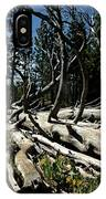 Mules Ear Timber IPhone Case