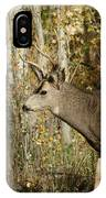 Mulie Buck 3 IPhone Case