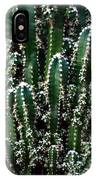 Nature's Cactus Abstract 2 IPhone Case