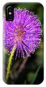 Natures Fireworks IPhone Case