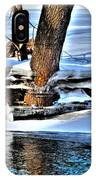 Nature's Icy Abstract No.2 IPhone Case