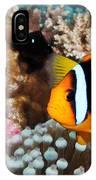 Turning Nemo IPhone Case