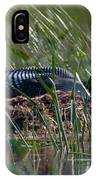Nesting Loon IPhone Case