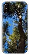 Nests IPhone Case