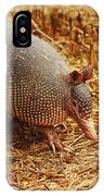 Nine-banded Armadillo Portrait IPhone Case