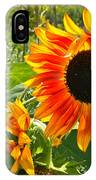 Noontime Sunflowers IPhone Case