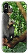 North Sumatran Leaf Monkey Presbytis IPhone Case