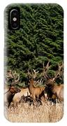 Northcoast Elk Along The 101 IPhone Case
