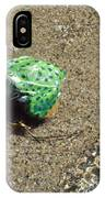 Northern Leopard Frog At The Lake IPhone Case
