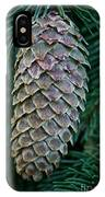 Norway Spruce Cone IPhone Case