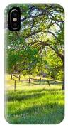 Oak Trees In The Spring IPhone Case