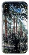 Oasis At Death Valley IPhone Case