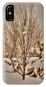 Old Country Christmas IPhone Case