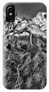 Old Desert Tree IPhone Case