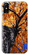 Old Elm Tree In The Fall IPhone Case
