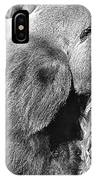 Old Grey Back IPhone Case