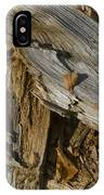 Old Tree Trunks And Leaves Decaying IPhone Case