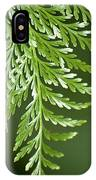 One Hanging Fern IPhone Case