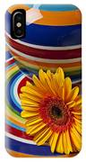 Orange Daisy With Plate And Vase IPhone Case
