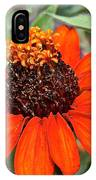 Orange Petals IPhone Case